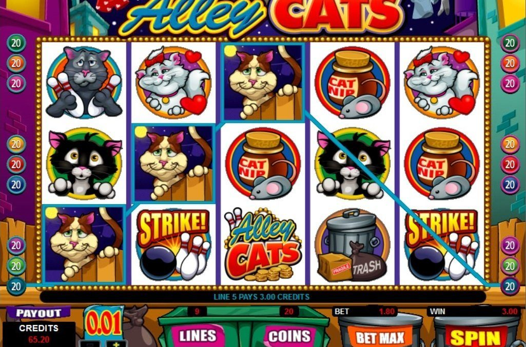 What the Alley Cats Casino Game is All About